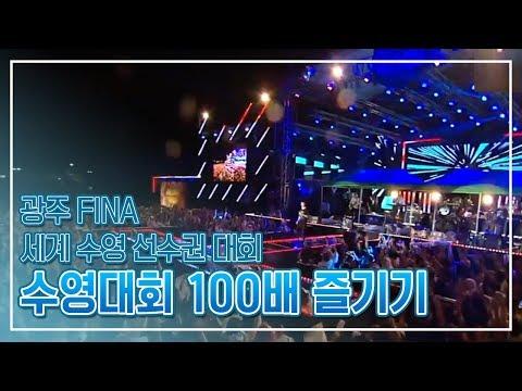 수영100배 즐기기 [2019 광주세계수영선수권대회 FINA World Championships GWANGJU]