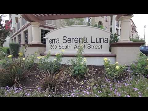 Distinct Living in Luxe Community - 800 South Abel Street #227