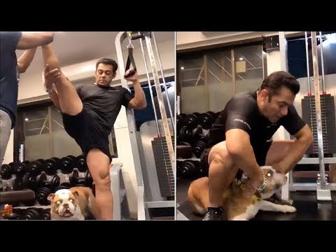 Salman Khan Playing With His Dog Torro During Workout In Gym Will Make You Smile