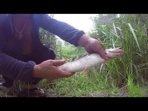 Рыбалка в Клину.Клинское Водохранилище