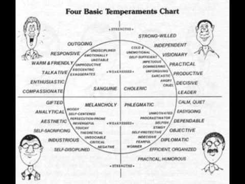 Dr. David Hansen- Transforming Temperaments