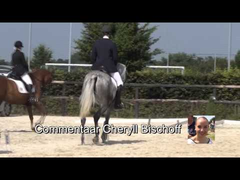 Paardensport Bocholtz 2013 de reportage HD