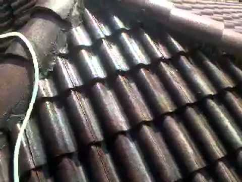 Roof Cleaning By Tropical Roof Exterior Orlando Youtube