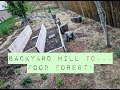 Backyard Permaculture Food Forest Tour ~ Bare Root Beginnings! Perennial Garden ~ Edible Landscaping