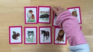 """めばえコースの""""動物かるた""""です 同じ動物のカードを見つける遊びですが..."""