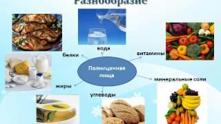 Презентация Гигиена питания