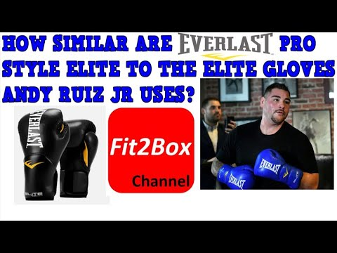 EVERLAST PRO STYLE ELITE TRAINING GLOVE REVIEW