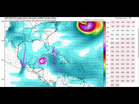 A Tropical Storm