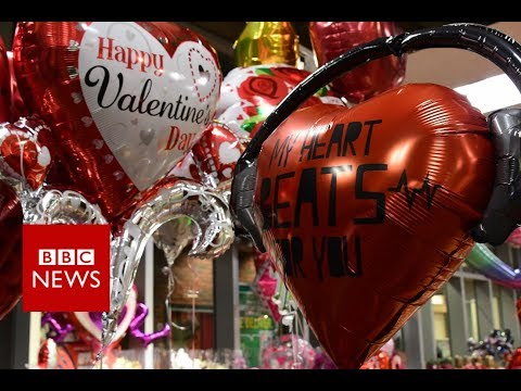 Sex in the City: No space for love in Hong Kong  BBC