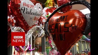 Sex in the City: No space for love in Hong Kong - BBC News