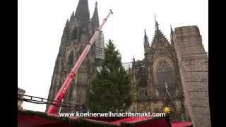 Der grösste Weihnachtsbaum in NRW