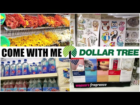 NEW DOLLAR TREE STORE * COME WITH ME JUNE 2020