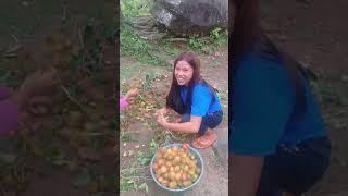 ubud-village Champlung Sari Bali