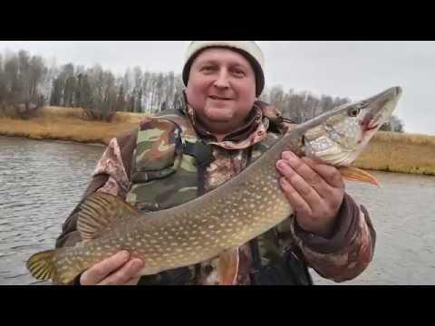 Рыбалка в Нижневартовске. Кулумань октябрь 2019 ;-)