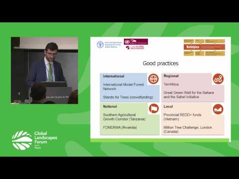 Investing in integrated landscapes to achieve the SDGs GLF 2015