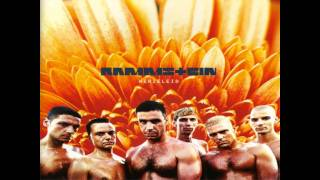 Rammstein - Laichzeit [HQ] English lyrics