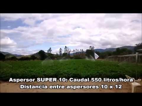 Resultados Sistema de riego agrícola por aspersión en papa (Bolivia )