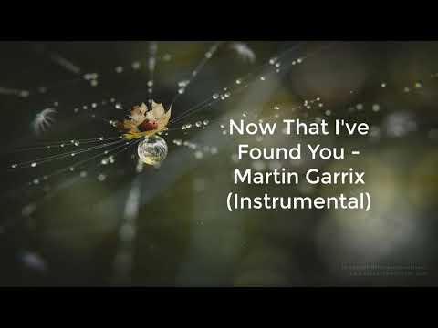 Martin Garrix - Now That I've Found You ( Instrumental )