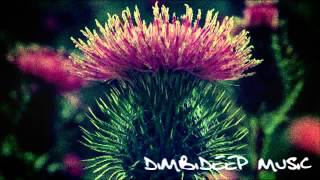 Shebuzzz - Grasses of the Past (DimbiDeep Music)