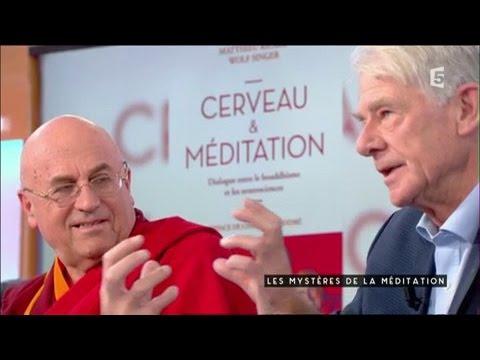 0 - Les Bienfaits de la Méditation