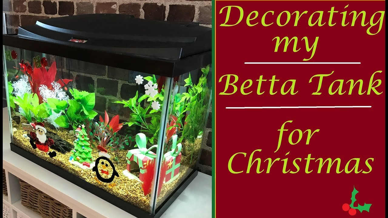Decorating My Betta Tank For Christmas Tank Tour Youtube