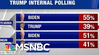 Trump's Early Internal Polling Shows Him Behind Joe Biden In Battleground States | Hardball | MSNBC