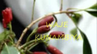 UKICHUNGUWA USICHUNGUWE UTAYAJUWA - TARAAB