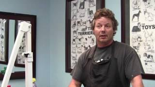 Dog Grooming School Vs Apprenticeship | Chicago Illinois Dog Grooming School