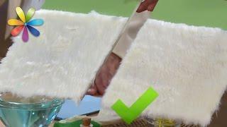 Проверяем советы, как почистить искусственный белый мех! – Все буде добре. Выпуск 932 от 15.12.16