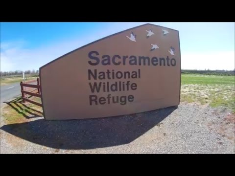 Sacramento National Wildlife Refuge Visitor's Center