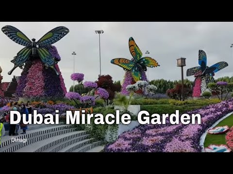 Miracle Garden Opening soon for 2019
