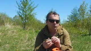 как сделать уловистой блесну на лосося.http://ulov-pripay.ru