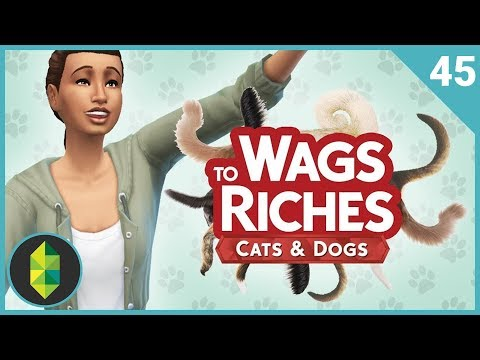 Wags to Riches - Part 45 (Sims 4 Cats & Dogs)