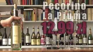 Szukasz smacznego wina? Sprawdziliśmy nową ofertę win włoskich z Biedronki [TEST]