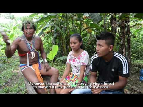 Drivers of deforestation. Panama 1 part