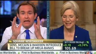 Senator Warren on Revive Glass-Steagall