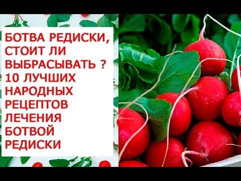Ботва редиски, стоит ли выбрасывать, уникальные целебные свойства ботвы редиски, 10 лучших народных