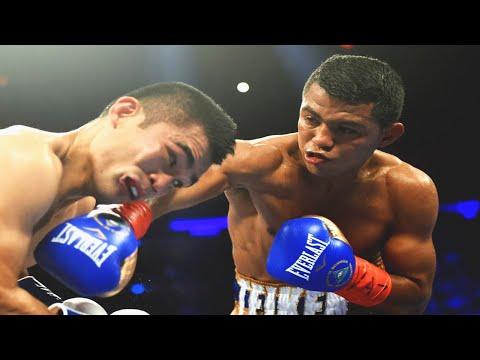 Roman Gonzalez vs Brian Viloria - Highlights (Explosive FIGHT & KNOCKOUT)
