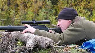 Ein Kamtschatka Abenteuer. Jagen auf Elch und Bär.