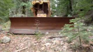 Cat D8 Abandoned in the woods.