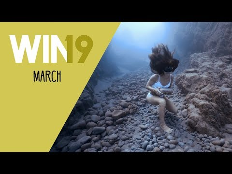 WIN Compilation March 2019 Edition | LwDn x WIHEL
