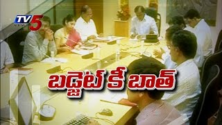 KCR eyes on Telangana Budget,reviews with officials