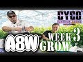 A8W Cyco Nutrients WK 3 GROW Feed Chart How to SE1:EP2 (Official Video)