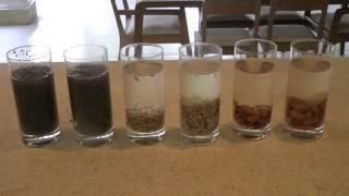 Gambar cover Why Soak Nuts & Seeds + Demo Showing How, Ep110