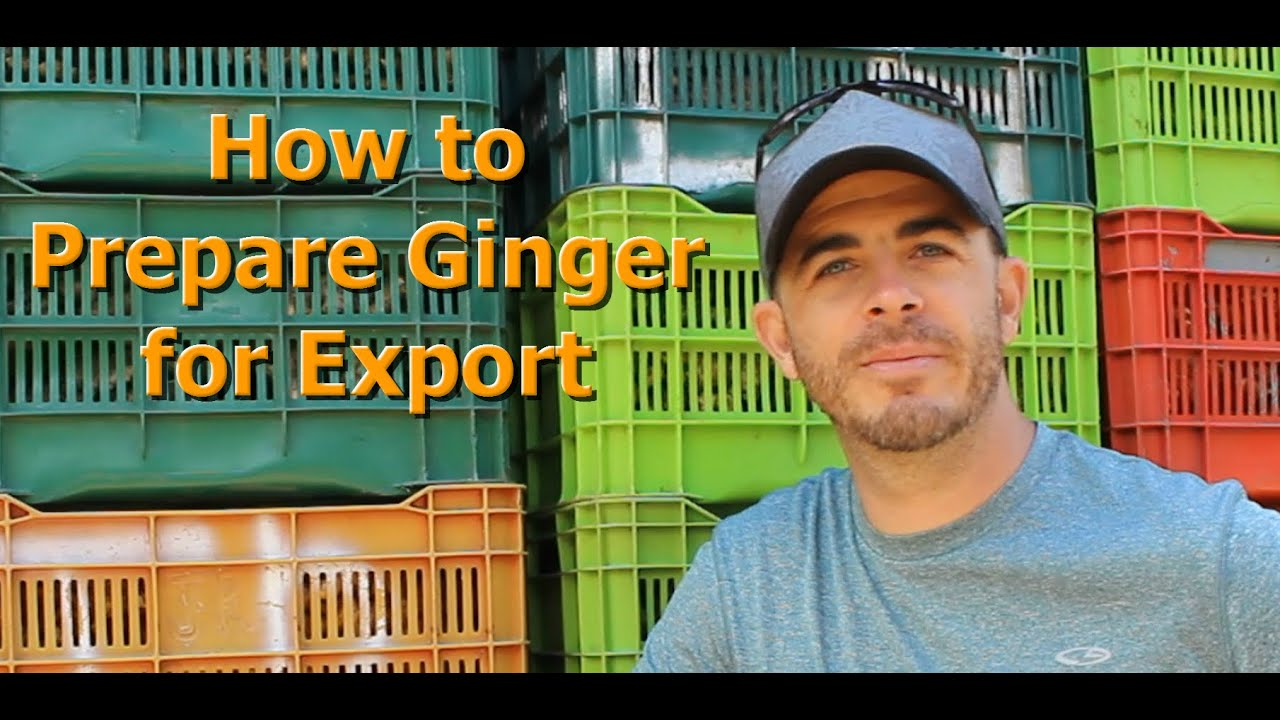 how to prepare fresh ginger to eat