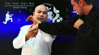 Tai Chi Chin Na - taiji chuan lesson 10
