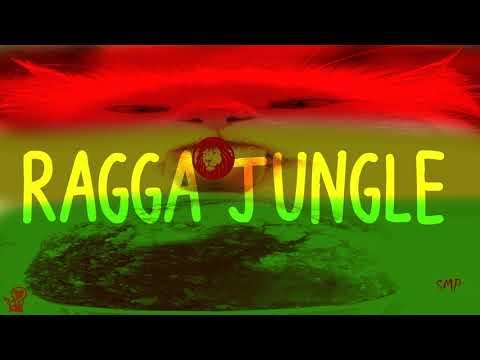 Ragga Jungle -  Vocal Dub Mix Winter Mix By SMP #343 Mp3