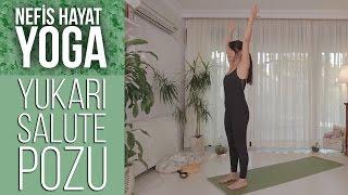 URDHVA HASTASANA | Kaygı ve Endişeyi Azaltan, Omurgayı Uzatan Duruş | Gözde İle Yoga