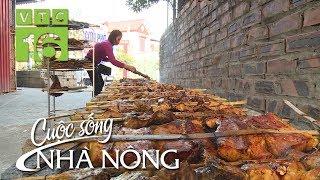 Đậm đà cá nướng Thái Xuyên, Thái Bình - CSNN 387 | VTC16