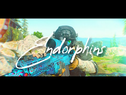 ENDORPHINS - Modern Warfare Dualtage With Metroum